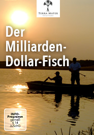 Der Milliarden-Dollar-Fisch
