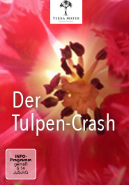 Der Tulpen-Crash