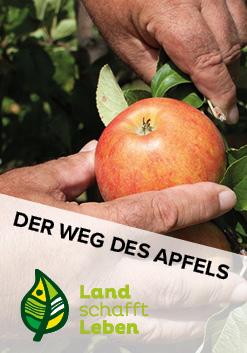 Der Weg des Apfels in Österreich