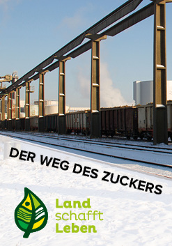 Der Weg des Zuckers in Österreich