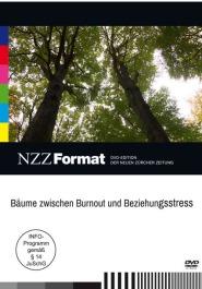 Bäume zwischen Burnout und Beziehungsstress