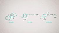 Kleine Moleküle