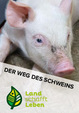Der Weg des Schweins in Österreich