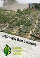 Der Weg der Zwiebel in Österreich