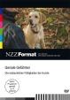 Geniale Gefährten-  Die erstaunlichen Fähigkeiten der Hunde