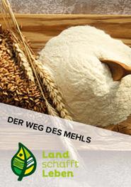 Der Weg des Mehls in Österreich